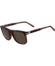 Calvin Klein Collection ck3198s homens loira óculos de sol havana