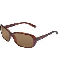 Bolle Molly tartaruga óculos de sol escuros do marrom escuro