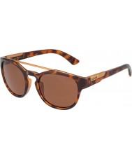 Bolle 12354 óculos de sol de tartaruga boxton