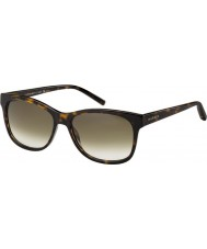 Tommy Hilfiger Th 1985 óculos de tartaruga 086 db