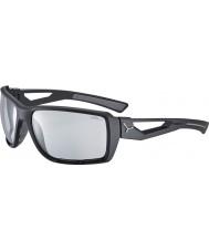 Cebe Cbshort4 atalho óculos de sol pretos
