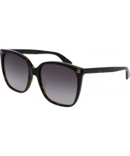 Gucci Senhoras gg0022s 003 óculos de sol
