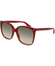 Gucci Senhoras gg0022s 006 óculos de sol