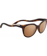 Serengeti 8574 lia óculos de tartaruga