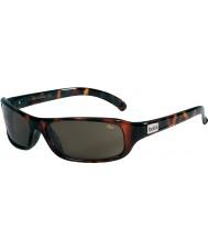 Bolle Presas óculos tns de tartaruga escura