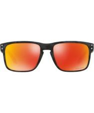 Oakley Oo9102 55 e9 holbrook óculos de sol