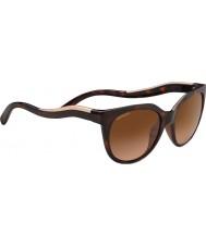 Serengeti 8572 lia óculos de tartaruga