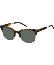 Polaroid pld2031-S homens nho rc havana ouro óculos polarizados