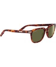 Serengeti 8473 óculos de sol Mattia Tortoise