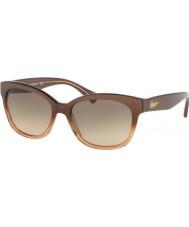 Ralph Ladies ra5218 55 15816g óculos de sol