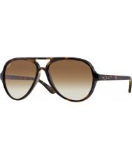 RayBan Rb4125 59 710 51 gatos 5000 óculos de sol