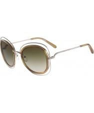 Chloe Senhoras ce123s Carlina óculos de sol de ouro brilhantes