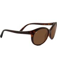 Serengeti Caterina escuro brilhante de tartaruga polarizada motoristas óculos de sol