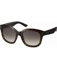 Polaroid Homens pld4035-s 086 94 óculos escuros havana polarizados