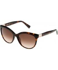 Furla Ladies Zizi su4896s-743 brilhantes marrom óculos de sol havana-amarelo