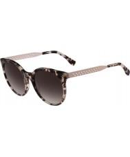 Lacoste Ladies l834s havana subiu óculos de sol
