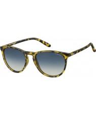 Polaroid Pld6003-n SLG pw havana óculos polarizados amarelo