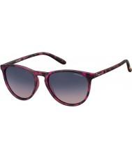 Polaroid óculos de sol Pld6003-n srr Q2 havana fúcsia polarizados