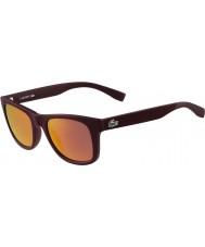 Lacoste óculos de sol cor de vinho fosco L790s