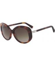 Longchamp Senhoras lo601s 214 55 óculos de sol