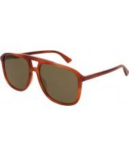 Gucci Mens gg0262s 002 58 óculos de sol
