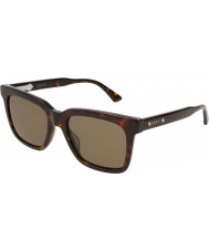 Gucci Mens gg0267s 002 53 óculos de sol