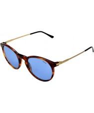 Polo Ralph Lauren Ph4096 50 toque clássico listrado havana 500772 óculos de sol