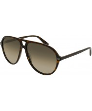 Gucci Mens gg0119s 002 óculos de sol