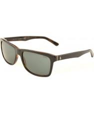 Polo Ralph Lauren Ph4098 57 ocasional topo de estar preto no jerry tartaruga 526087 óculos de sol
