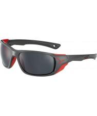 Cebe Cbjol7 jorasses l óculos de sol cinza